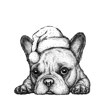 68866268 - french bulldog, black and white engrave. christmas hat.