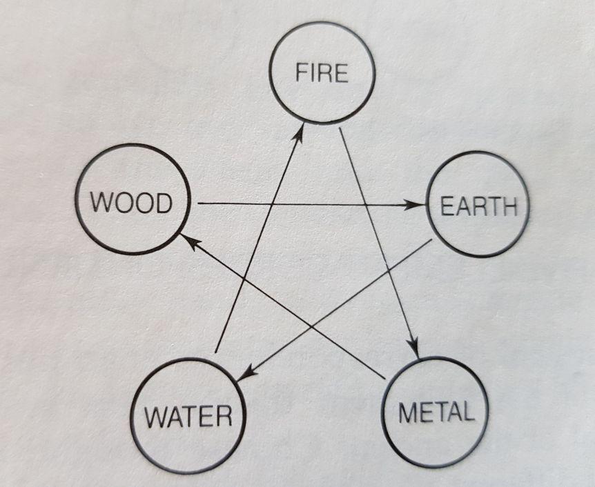 מעגל הבקרה